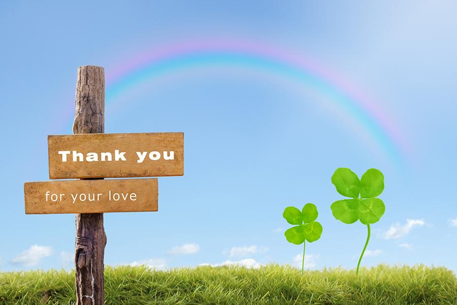 四つ葉のクローバーと「Thank you for your love」の看板と虹の写真