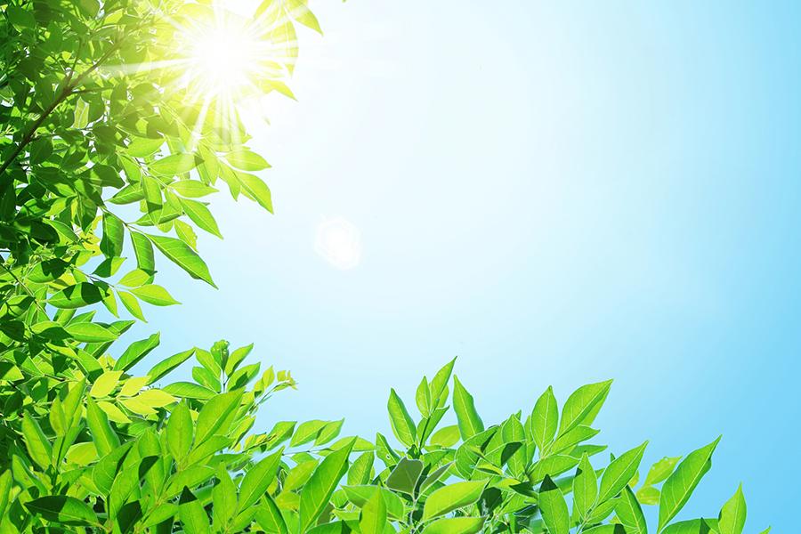 太陽が照りつける真夏のイメージ写真