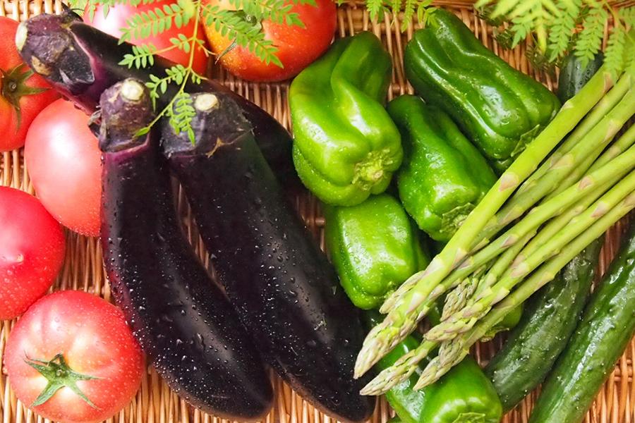 夏野菜のイメージ写真