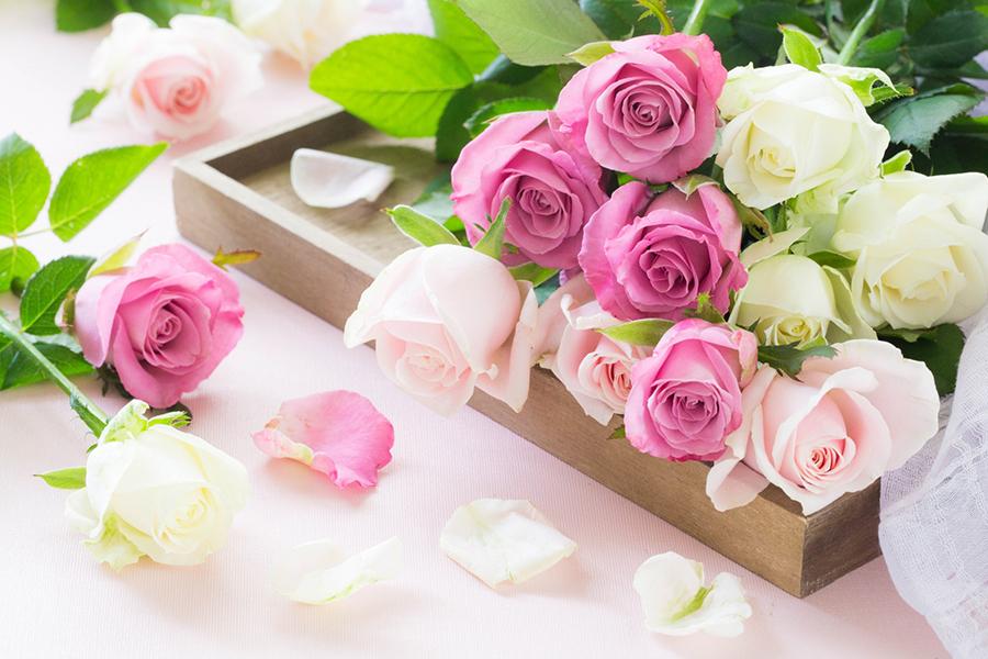 バラの花束のイメージ写真